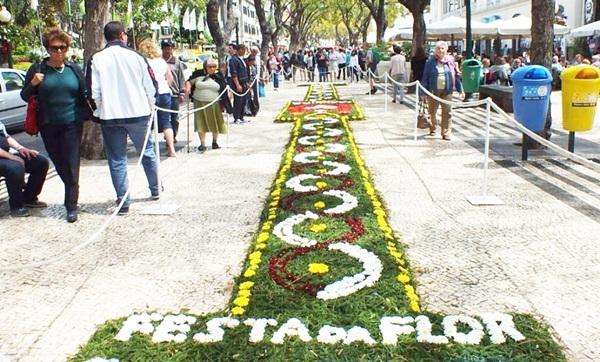 Flower carpet  in Funchal