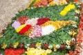 Flower-Carpet partial